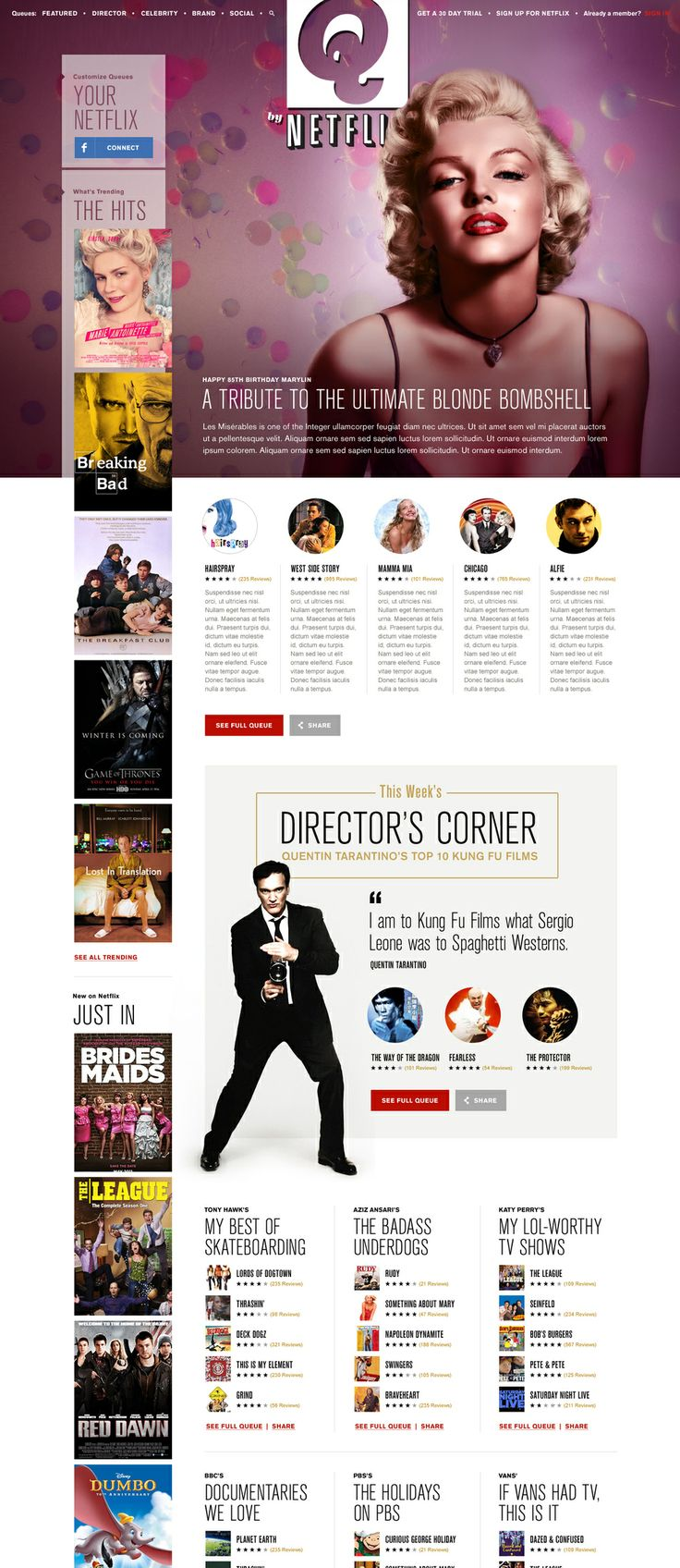 Heather Luipold: Netflix – Web Design