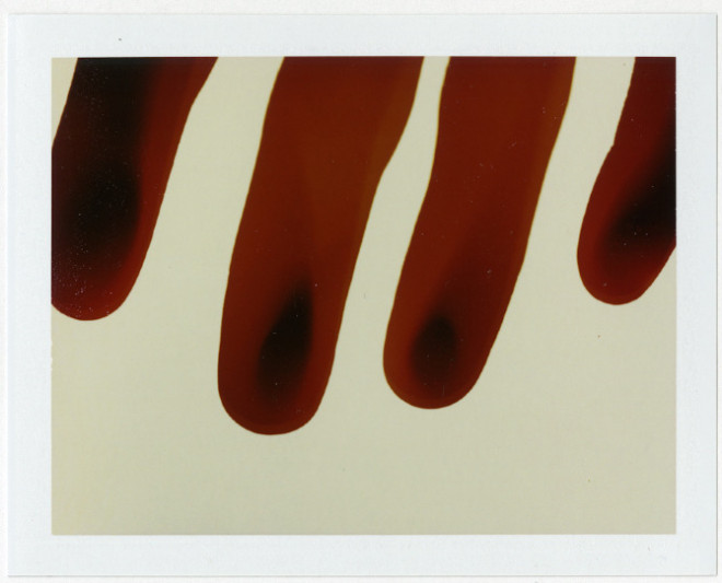 Polaroid Photography by Taylor Curry