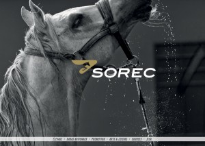 Sorec global Identity and branding