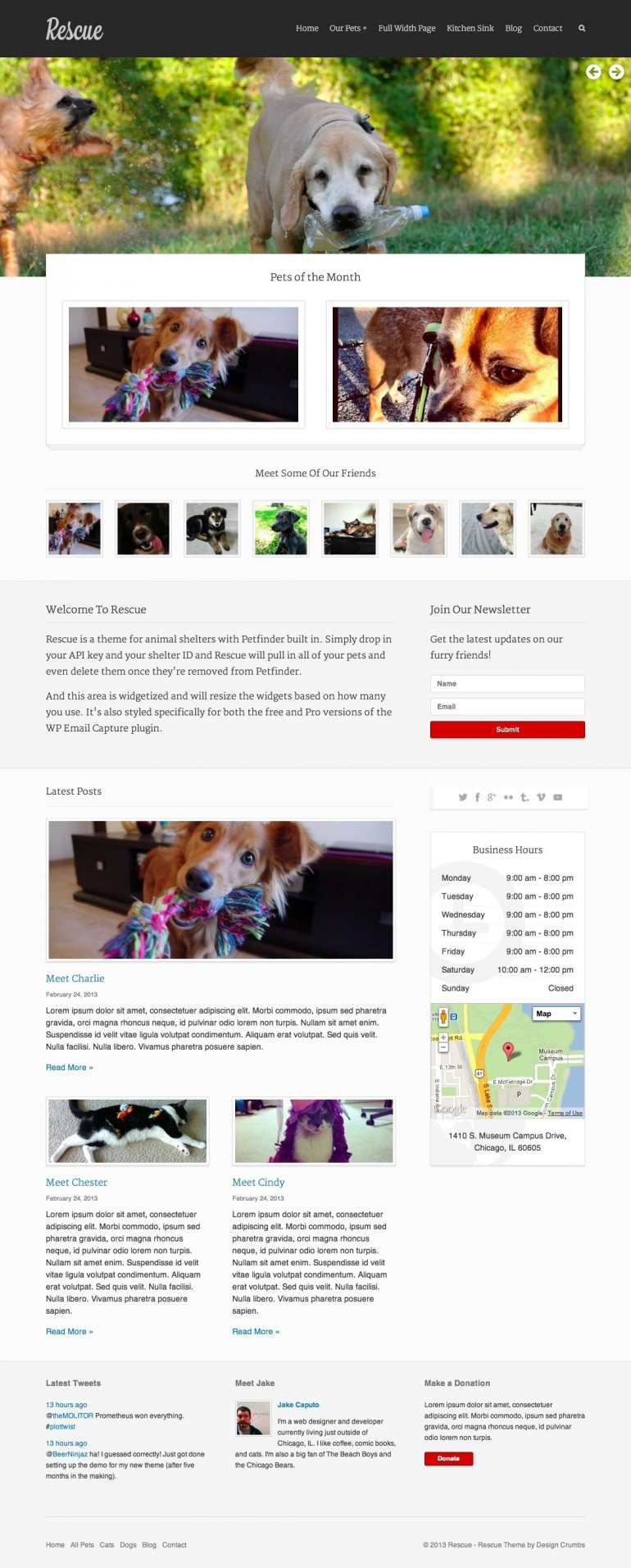 Rescue is an Animal Shelter HTML & PHP Template. Rescue is a theme built with one purpose: ...
