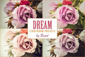 Dream Professional Lightroom Presets by beArtpresets on EtsyLightroom presets is a more profes ...