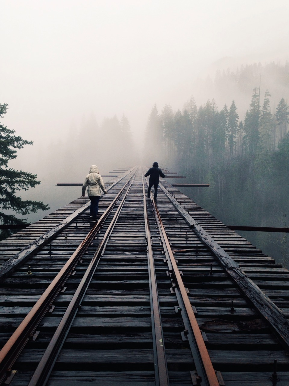 Finally made it to the legendary Vance Creek Bridge