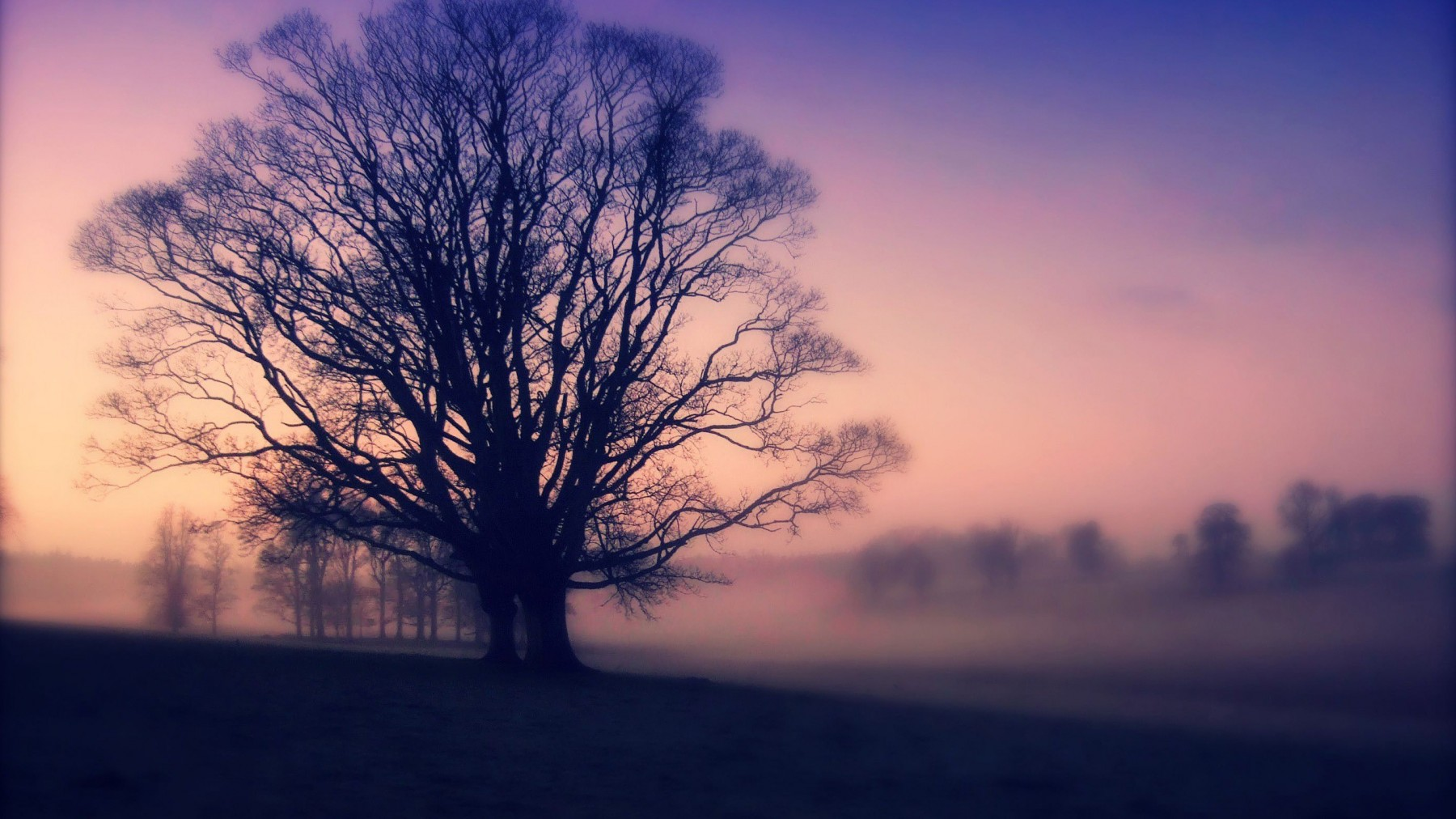 Lomography Landscape – Photography Wallpapers