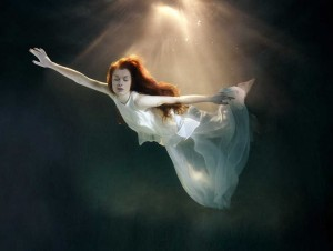 Underwater Photography by Mark Mawson