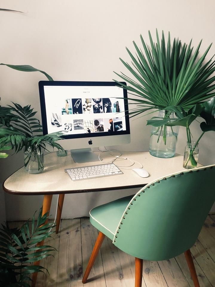 bring some green to your work space