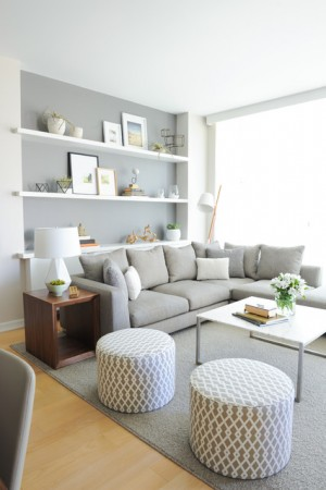 Transitional – Living Room
