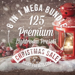 8 in 1 Christmas Mega Bundle includes 125 Premium Lightroom Presets; it's perfect for Photograph ...