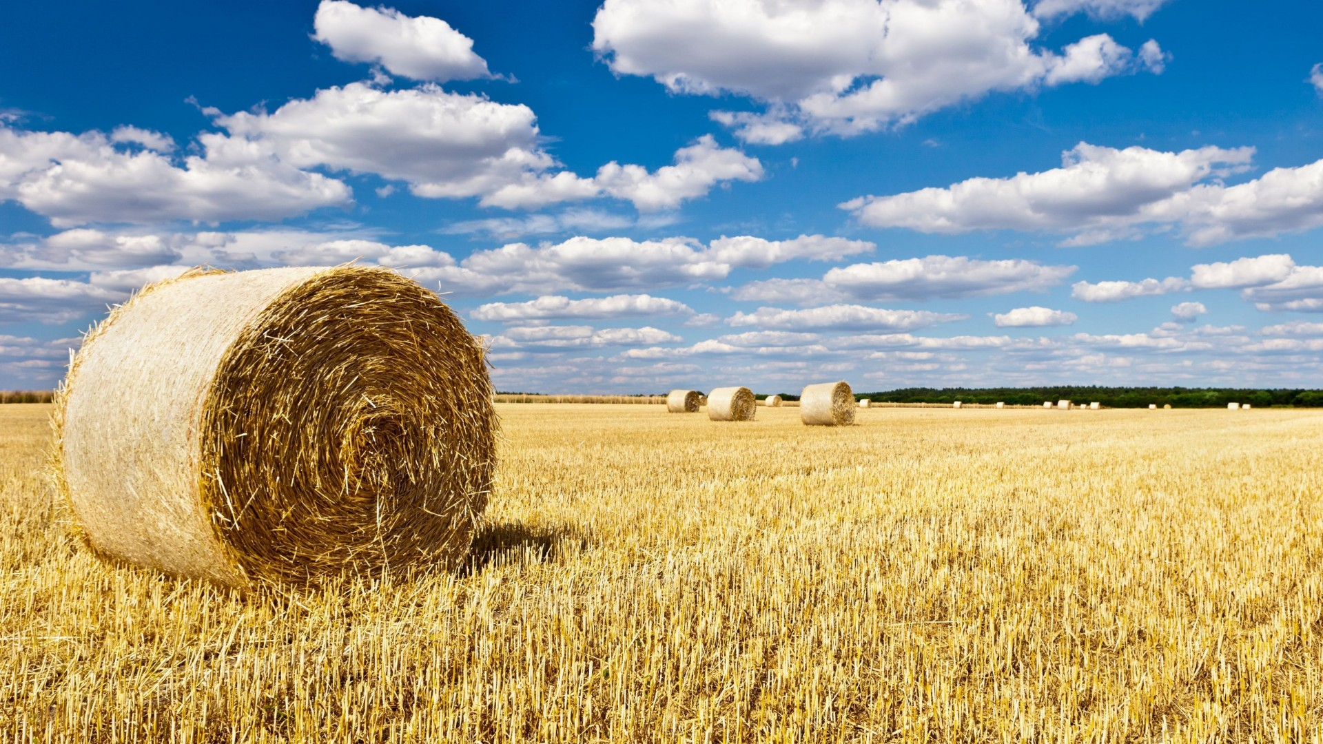 The Sloping Field – Photography Wallpapers