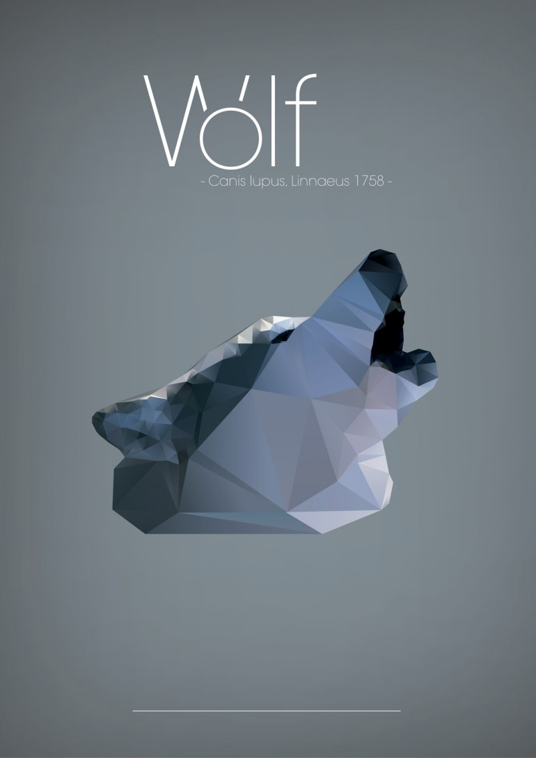 Polygonal illustrations