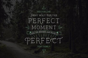 Don't wait For the Perfect Moment, Take the Moment & Make It Perfect