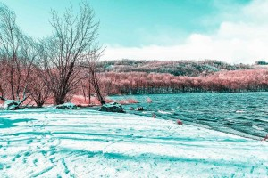 Infrared Photography by Paolo Pettigiani