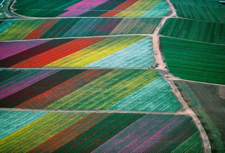 Aerial Photography by Alex MacLean | Landscape Photography