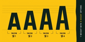 Tolyer Typeface
