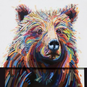 Bear by Justin Kane Elder