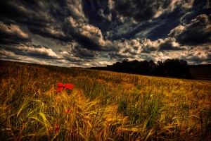 Stunning HDR Landscape – Photography Wallpapers