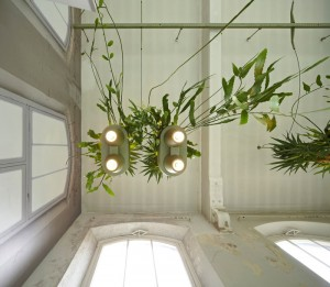 Multifunctional Lamp Brings Rainforest Home – InteriorZine