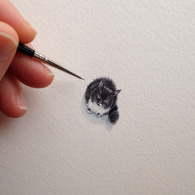 Miniature paintings by Brooke Rothshank