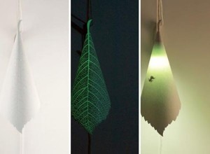 SOULeaf Light by ilsangisang
