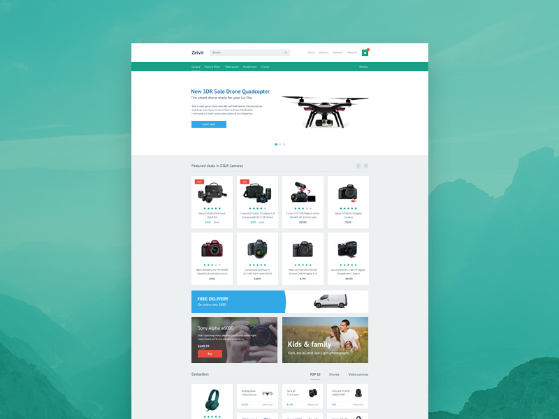 Zelvit Website Template