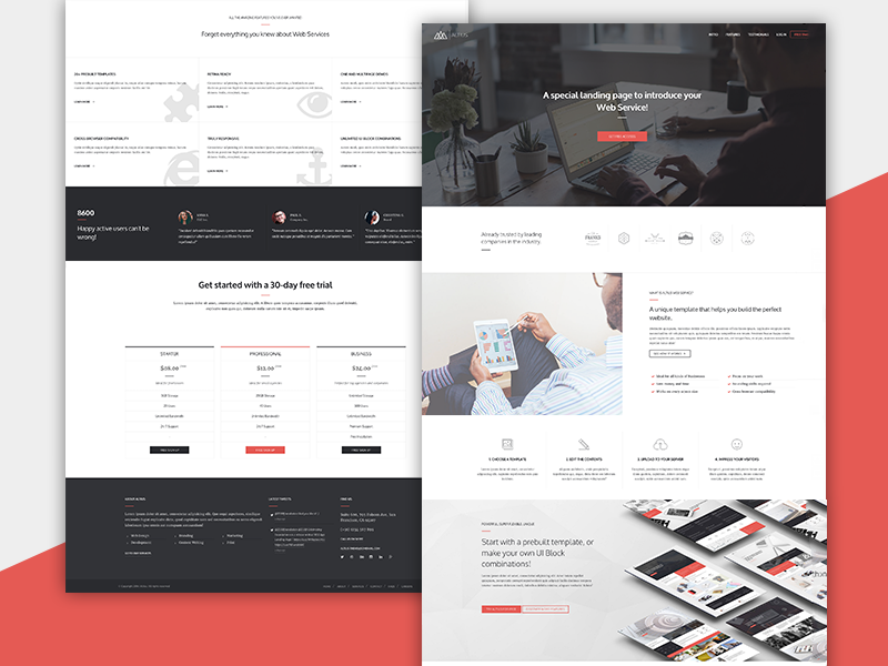 A landing page template concept for your web service or web application. This layout is part of ...