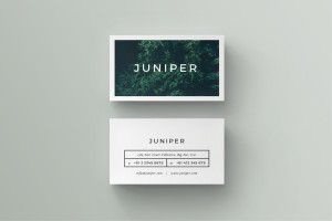 J U N I P E R Business Card
