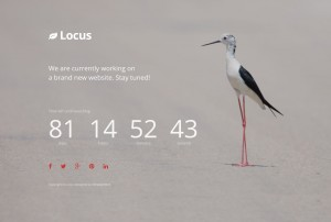 Locus – Simple Coming Soon Template