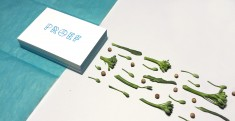 This is a branding project for a startup called PROEF, that I did from scratch to finish.  Here  ...