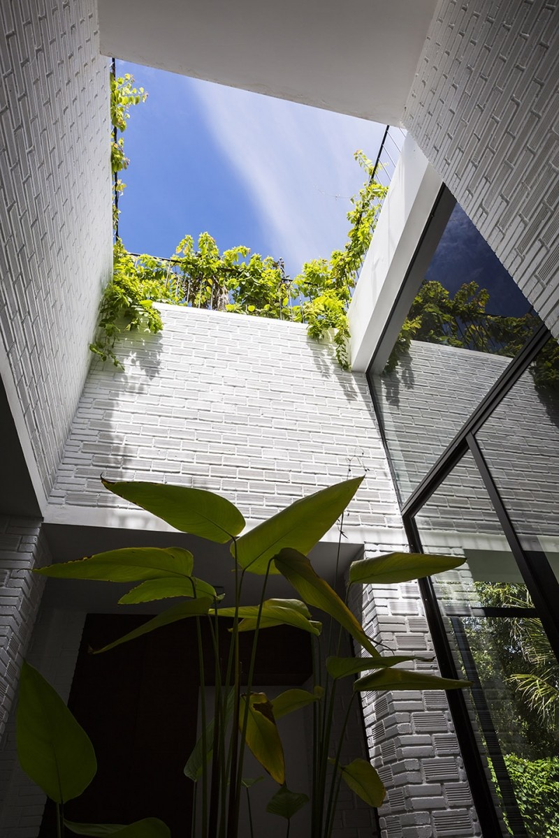 Rooftop Garden House with Cozy Interiors / VTN Architects