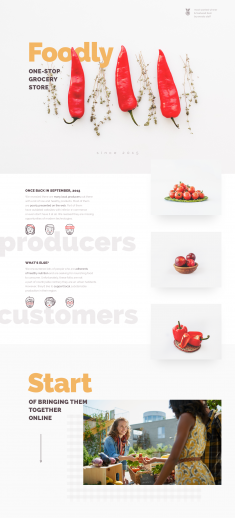 Foodly — One-Stop Food Store