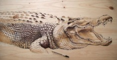 Nature Inspired Drawings Created on Recycled Wood