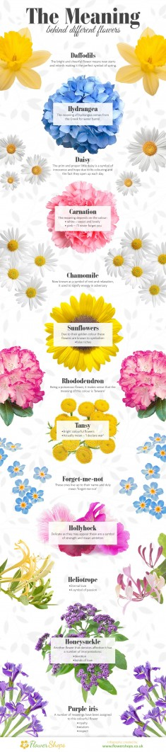 Have you wondered about the meaning of different flowers? Of course they are not arbitrary. Have ...