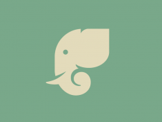 Elephant Icon by Anna Rising