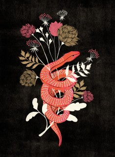 Bloom Snake and Flowers by Marissa Johnson