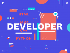"""Developer – colorful poster exploration by Geunbae """"GB"""" Lee"""