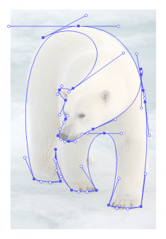 Polar Bear Logo by Gert van Duinen