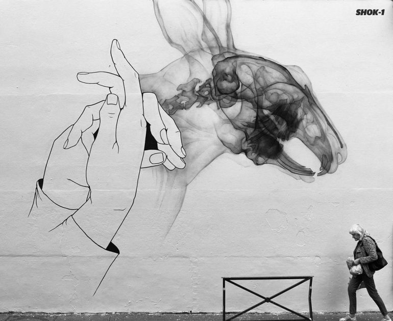 Impressive X-Ray street art by SHOK-1