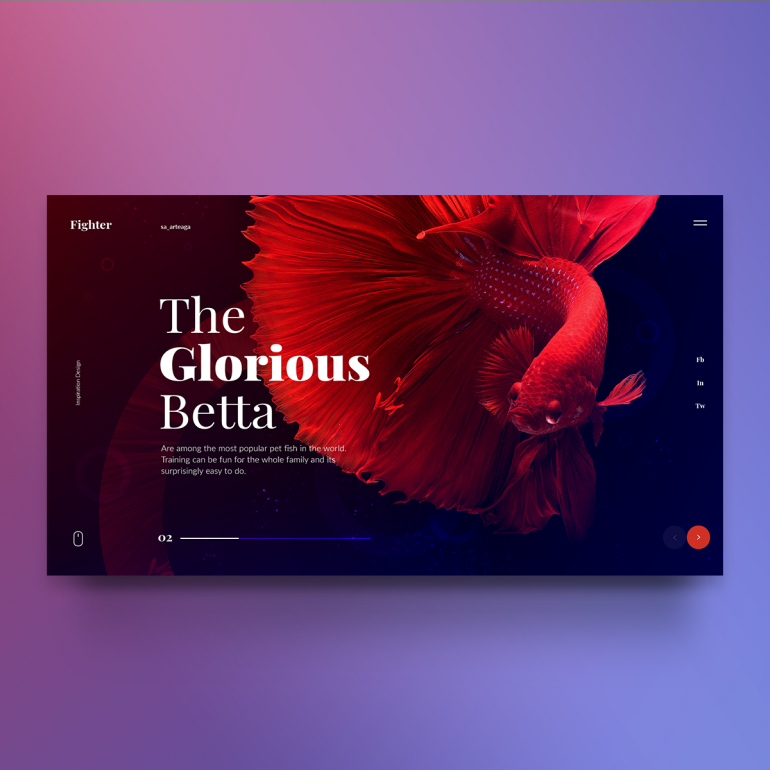 Fighter Theme – Inspiration Design