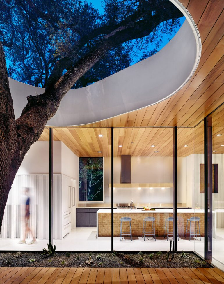 Constant Springs Residence – A Home Built Around a Tree
