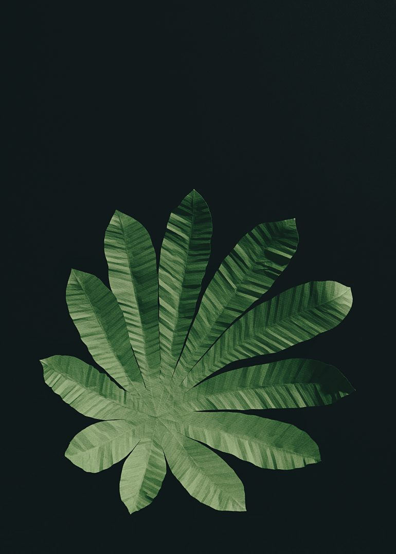 Paper Leaves Wallpaper