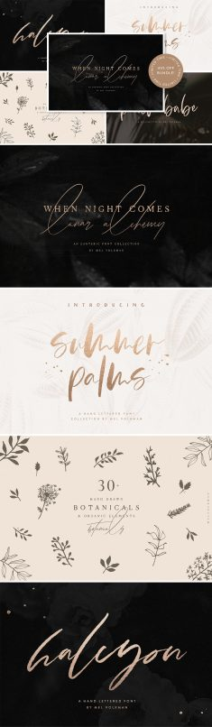 I Want It All Bundle ~ Script Fonts