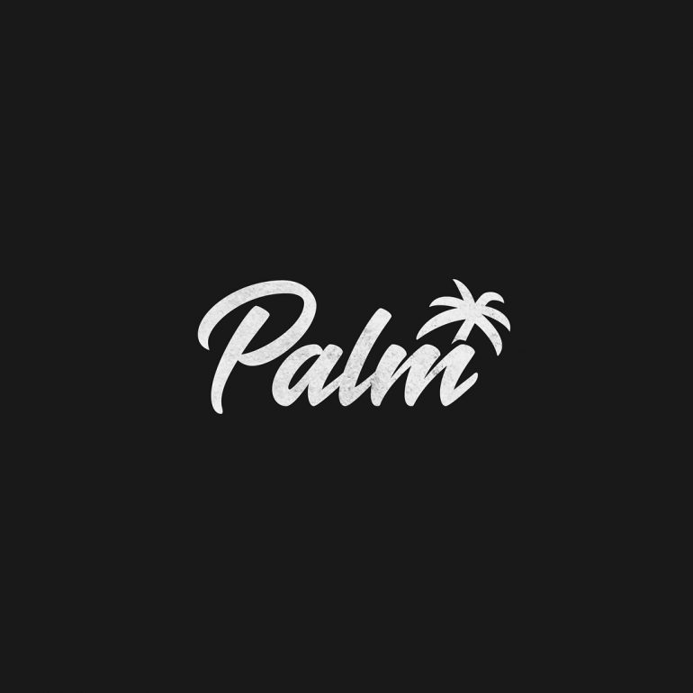 Completed logo for Palm Streetwear