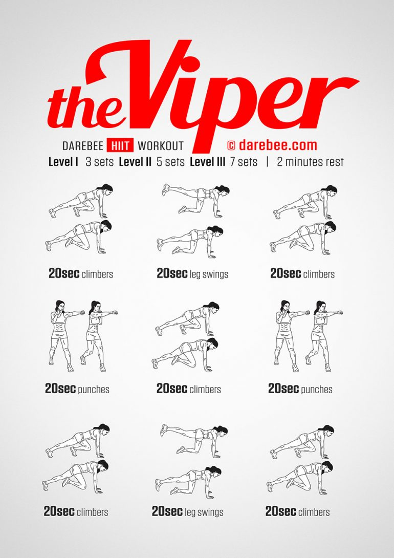 The Viper Workout