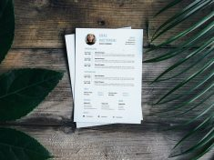 Free Simple Entrepreneur Resume Template