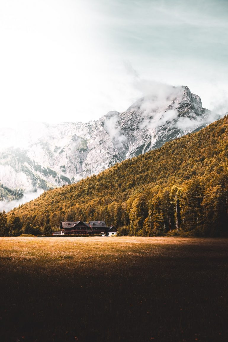 House, Forest and Mountain in Austria.