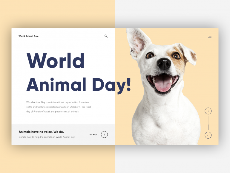 🐶 World Animal Day