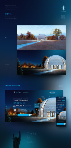 Single screen design for the SKYDOM company