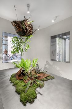 Absolute Flower Shop / More Design Office