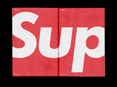 Supreme® Brand Guide // AND2ES™