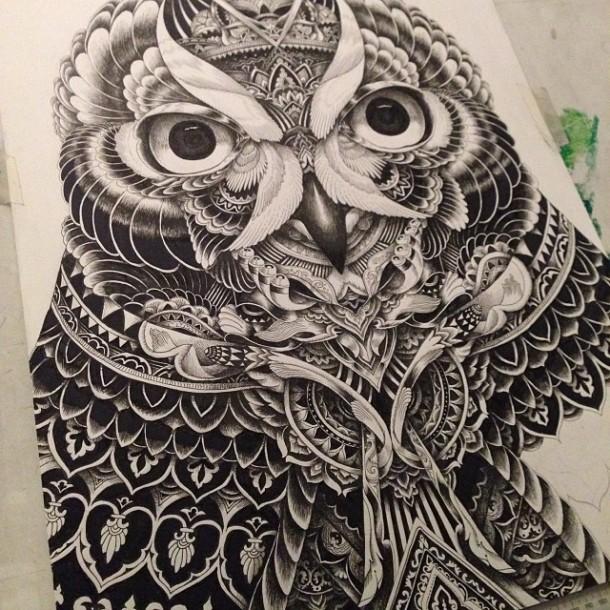 Owl Portraits by Ian MacArthur