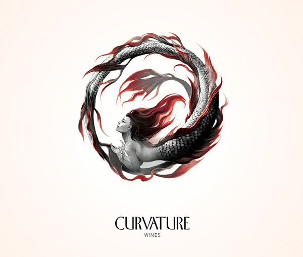 Curvature Wines by Eva Widermann, via Behance